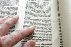 Torah scroll. A Man is reading the Torah stock photo