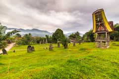 Toraja传统风格建筑学 库存图片