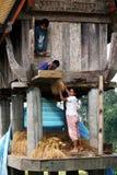 Toraja Fotografie Stock Libere da Diritti