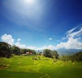 Toraja Fotografering för Bildbyråer