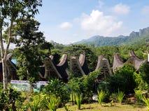 Toraja-Dorf stockfotos
