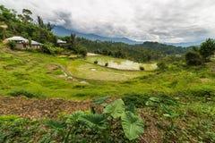 Toraja landscape Royalty Free Stock Photography