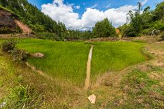 Toraja-Landschaft Lizenzfreie Stockbilder