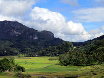 Toraja Sulawesi. Mountains and rice fields in Toraja, Sulawesi in Indonesia Stock Images