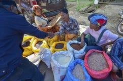 toraja tana Индонесии sulawesi Стоковая Фотография