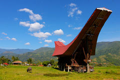 toraja tana sulawesi της Ινδονησίας Στοκ Εικόνα