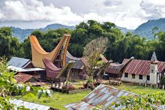 Toraja Traditional Village Stock Photography