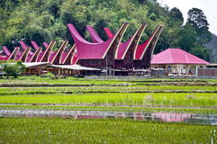 Toraja village Stock Photo