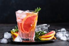A toranja e os alecrins frescos descaroçam o cocktail com suco, bebida de refrescamento ou bebida do citrino frio do verão com ge Imagens de Stock