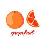 A toranja frutifica cartaz ao a descrição do estilo dos desenhos animados inteira e o meio de citrinos suculentos frescos no fund Imagem de Stock