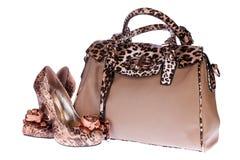 torba buty Zdjęcie Stock