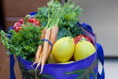 torby świeży sklep spożywczy produkty spożywcze Obrazy Stock