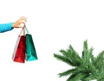 torby rozgałęziają się prezenta ręki mienia sosny Zdjęcia Royalty Free