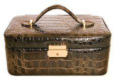 torby skóry zdjęcie royalty free