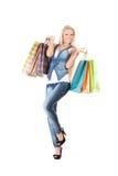 torby target677_1_ kobiet potomstwa Obrazy Stock