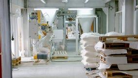 Torby z mąką w magazynie mąki fabryka Mąka zapas Młyński magazyn obraz stock