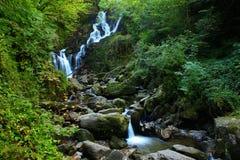 Torc瀑布爱尔兰 库存图片