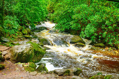 Torc Falls, Killarney National Park, Ireland Royalty Free Stock Image
