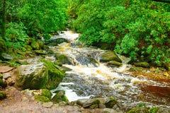 Torc Falls, Killarney National Park, Ireland. Torc Falls in Killarney National Park, Ireland Royalty Free Stock Image