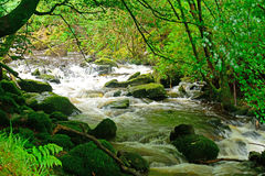 Torc Falls, Killarney National Park, Ireland. Torc Falls in Killarney National Park, Ireland Royalty Free Stock Images