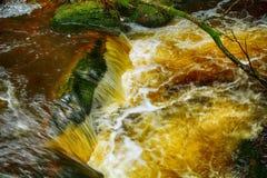 Torc Falls, Killarney National Park, Ireland. Torc Falls in Killarney National Park, Ireland Stock Photos