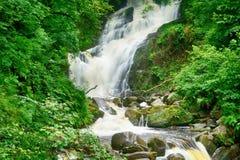 Torc Falls, Killarney National Park, Ireland. Torc Falls in Killarney National Park, Ireland Royalty Free Stock Photo