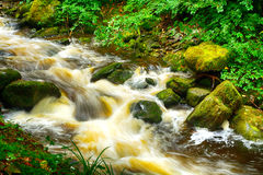 Torc Falls, Killarney National Park, Ireland Stock Images