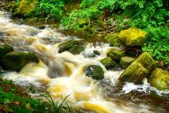 Torc Falls, Killarney National Park, Ireland. Torc Falls in Killarney National Park, Ireland Stock Images
