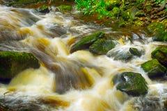 Torc Falls, Killarney National Park, Ireland. Torc Falls in Killarney National Park, Ireland Stock Photography