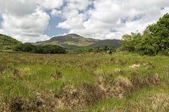 Torc Mountain Royalty Free Stock Photos
