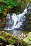 Torc vattenfall i den Killarney nationalparken Royaltyfri Fotografi