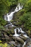 Torc vattenfall i den Killarney nationalparken, Irland Fotografering för Bildbyråer
