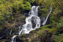Torc Waterfall. In Killarney National Park, Co.Kerry, Ireland Stock Image