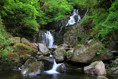 Torc waterfall.. Torc waterfall in Killarney National Park in Ireland Royalty Free Stock Images