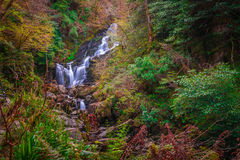 Torc waterfall at autumn. Beautiful Torc waterfall photographed in autumn in Killarney National Park, Ireland Stock Photos