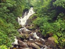 Torc waterfall kerry. Waterfall trees kerry ireland Stock Photography