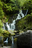 Torc waterfall in Killarney National Park Royalty Free Stock Images