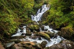 Torc Waterfall. Killarney National Park county Kerry, Ireland Royalty Free Stock Photo