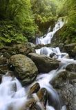 Torc Waterfall. Killarney National Park, County Kerry, Ireland Stock Photo