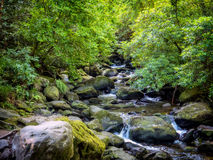 Torc waterfall near Killarney at Ring of Kerry Royalty Free Stock Photos