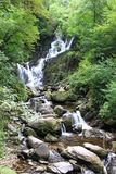 Torc waterfall. In the Ring of Kerry forest, Ireland Royalty Free Stock Photography
