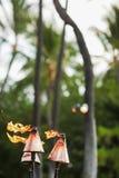 Torce hawaiane di tiki Fotografia Stock Libera da Diritti