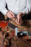 Torcedor, das handgemachte Zigarren parejos rollt Stockbild