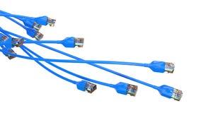 Torcer los cables azules de Internet el ejemplo conceptual 3d del cable de Ethernet y rj-45 tapan Foto de archivo libre de regalías