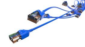 Torcer los cables azules de Internet el ejemplo conceptual 3d del cable de Ethernet y rj-45 tapan Foto de archivo