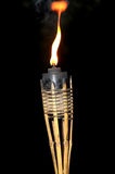 Torch. Flame of a torch at night Royalty Free Stock Images