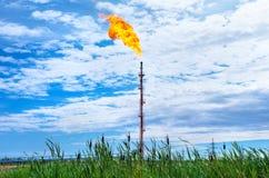 Torche d'huile Images stock