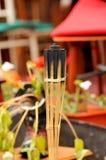 Torche du feu Image stock