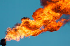 Torches for casing-head gas. Flaring during oil, Russia Stock Photo