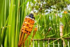 Torches de bambou Photographie stock libre de droits